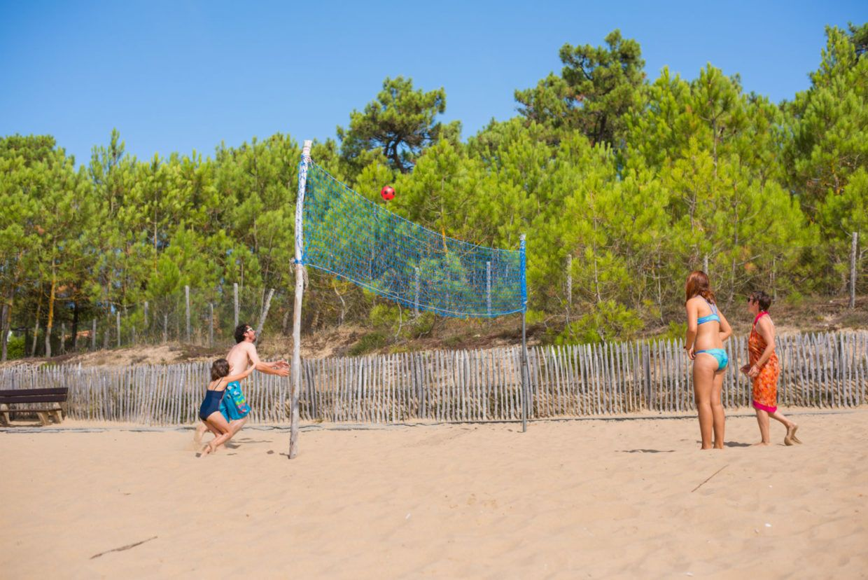 Plage, famille, beach-volley